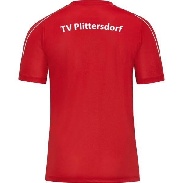 TV-Plittersdorf-6150-01-Ruecken
