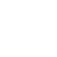 Logo-Chemnitz-Ju-Jutsu-Verein