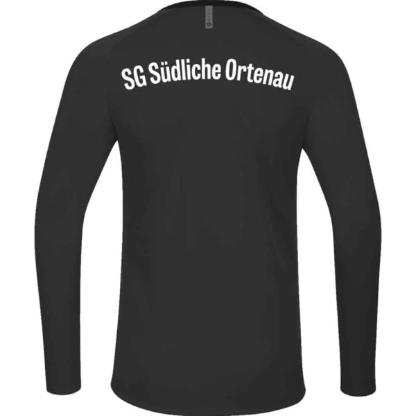 SG-Suedliche-Ortenau-Sweat-8820-08-Ruecken